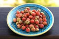 Wild strawberries Fragaria viridis in blue plate Royalty Free Stock Photo