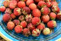 Wild strawberries Fragaria viridis in blue plate closeup Royalty Free Stock Photo