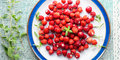Wild strawberries on a plate. Banner Royalty Free Stock Photo