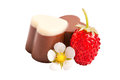 Wild strawberry with chocolate isolated Royalty Free Stock Photo