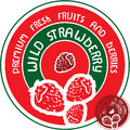 Wild strawberry label vector sign Stock Images