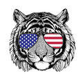 Wild tiger Hand drawn illustration for tattoo, emblem, badge, lo