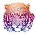 Wild tiger. Wild pirate or biker. Vector animal portrait. Sailor, motorcyclist. Print for children clothing, tee. Kids Royalty Free Stock Photo