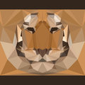 Wild tiger stares forward. Nature and animals life theme background. Abstract geometric polygonal triangle illustration Royalty Free Stock Photo