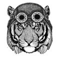 Wild tiger wearing aviator hat Motorcycle hat with glasses for biker Illustration for motorcycle or aviator t-shirt with