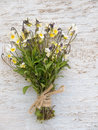Wild viola flowers bouquet tied with jute rope