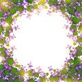 Wild violet border Royalty Free Stock Photo