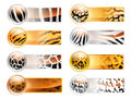 Wild web banners Royalty Free Stock Photos