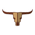 Wild west cow skull