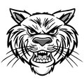 Wildcat Illustration Royalty Free Stock Photo