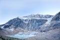 Wilde aard in rocky mountains angel glacier jasper national park Stock Afbeeldingen