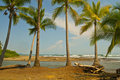 Wilderness Beach in the Tropics Royalty Free Stock Photos