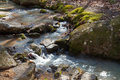 Wilderness stream filled with rocks Stock Photos