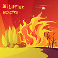 Wildfire Disaster Illustration