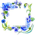 Wildflower anemone flower frame in a watercolor style isolated.
