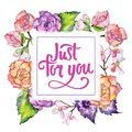 Wildflower begonia flower frame in a watercolor style. Royalty Free Stock Photo