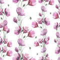 Wildflower flower poppy pattern in a watercolor style. Royalty Free Stock Photo