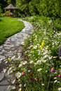 Wildflower garden and path to gazebo with paved leading blooming daisies Stock Images
