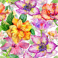 Wildflower hibiscus flower pattern in a watercolor style isolated.