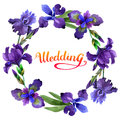 Wildflower iris flower wreath in a watercolor style isolated.