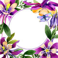 Wildflower orchid flower frame in a watercolor style isolated.