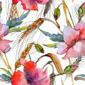 Wildflower spica pattern in a watercolor style. Royalty Free Stock Photo