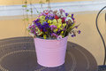 Wildflowers in a colorful bucket Royalty Free Stock Photo