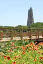Wildflowers And Lighthouse