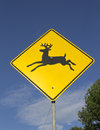 Wildlife crossing warning sign Stock Image