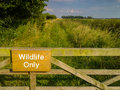 Wildlife Only Nature Reserve
