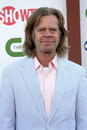 William H Macy Stock Photography