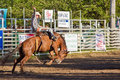 Willits Frontier Days Rodeo Stock Photo