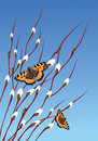 Willow branches and butterflies on blue sky background Stock Photo