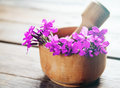 Willow herb flowers in mortar with pestle on wooden background medicinal Stock Photo