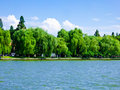 Willows by West Lake Cultural Landscape of Hangzhou Royalty Free Stock Photo