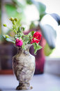 Wilted rose in a vase Stock Photos