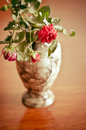 Wilted rose in a vase Stock Images