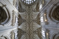 Winchester Cathedral ceiling Royalty Free Stock Image
