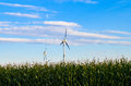 Wind energy mill in an farmland landscape with corn field Royalty Free Stock Images