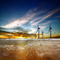 Wind farm at sunrise above sea during Royalty Free Stock Images
