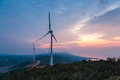 Wind farm in sunrise by jiangxi poyang lake Royalty Free Stock Image
