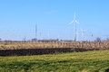 Wind farm in tilth field green lawn plowed and vineyards white generators on blue sky Stock Images
