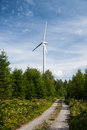 Wind power plant in the forest black germany Royalty Free Stock Image