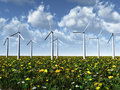 Wind power turbines on a meadow. Stock Photos