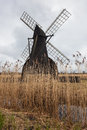 Wind pump in landscape with reed beds at wicken fen cambridgeshire england one of the last surviving pumps a wetland nature Stock Photography