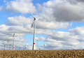 Wind turbine electrical generator infield