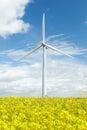 Wind Turbine In Field Of Oil Seed Rape Royalty Free Stock Photo