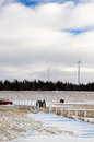 Wind turbine in Gaspesie Royalty Free Stock Photo