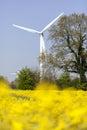 Wind turbine - rape field Royalty Free Stock Photo