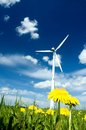 Wind Turbine in a Summer Meadow Royalty Free Stock Photo